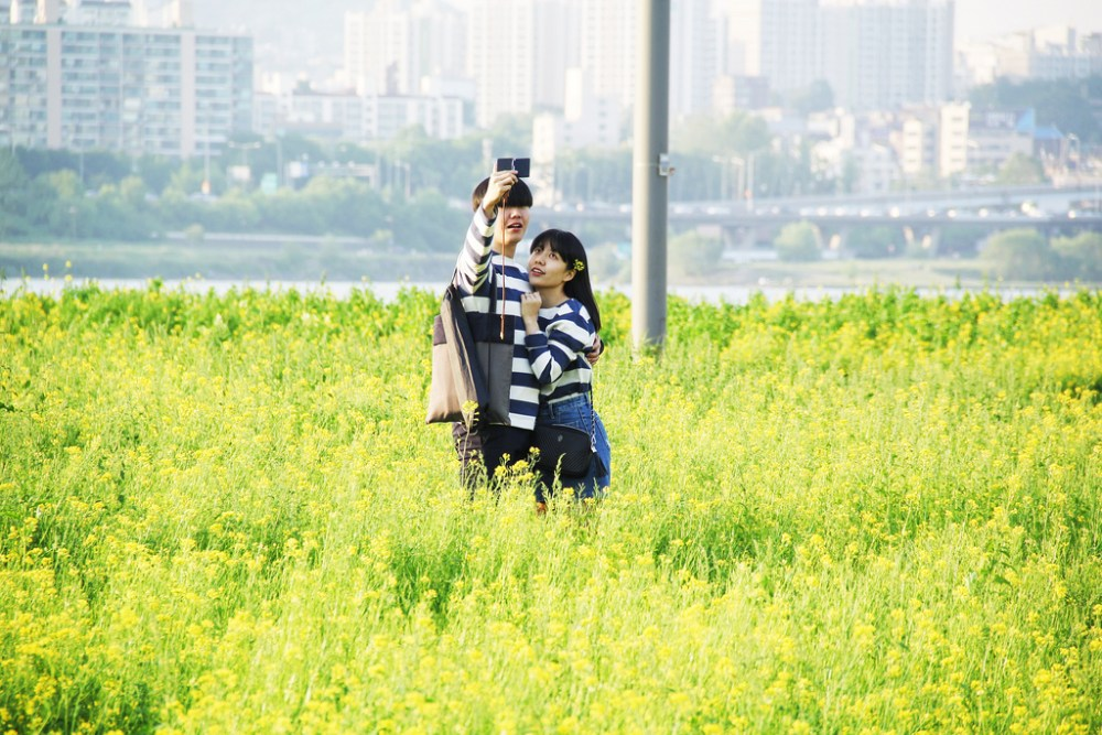 Travel Photographer | Couple Summer Seoraeseom Seoul South Korea