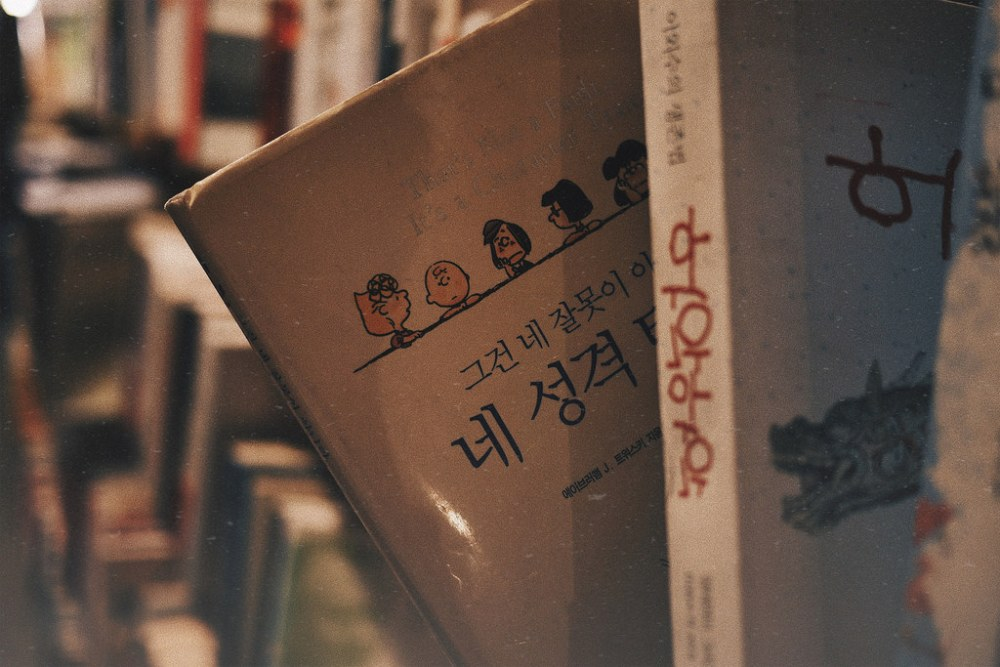 Travel Photographer | Cheonggyecheon secondhand book fair Seoul South Korea