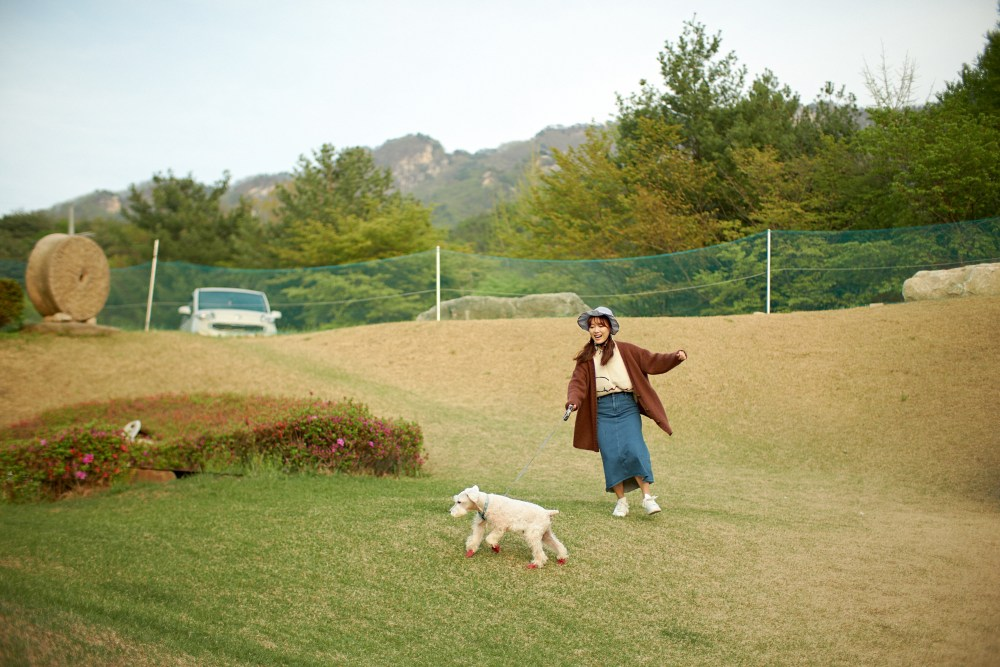 Photographer | Pocheon South Korea