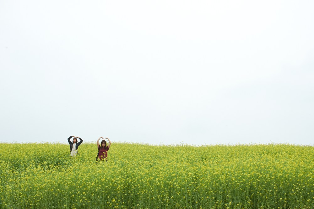 Photographer | Anseong Farmland South Korea