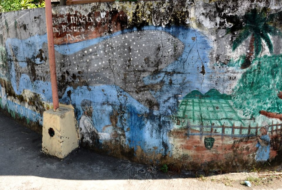 Swimming with whale sharks - mural in Donsol