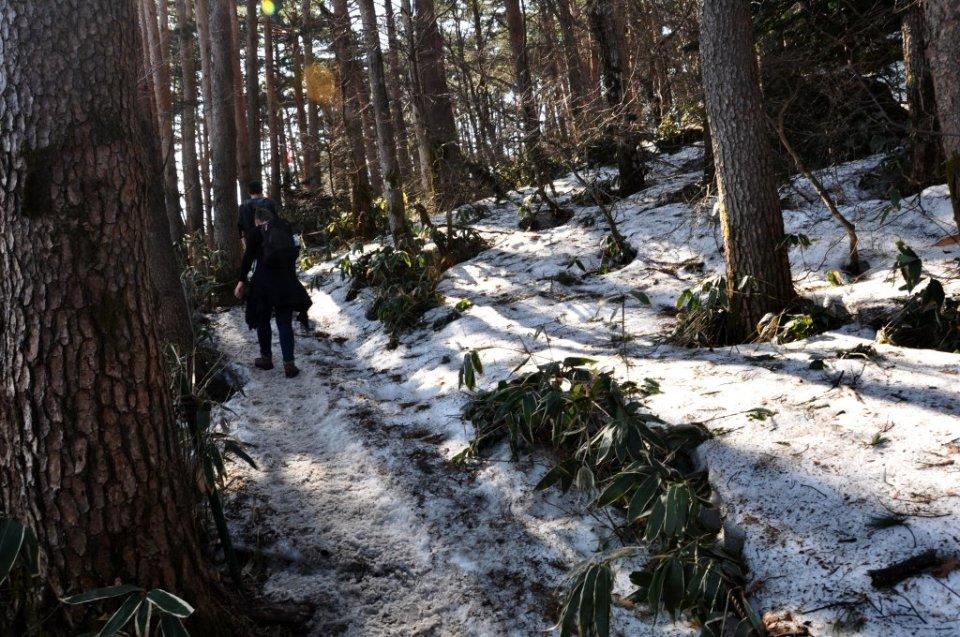 Climbing Mt Hallasan in the snow