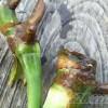 発根ファン、そして根フェチの方、お待たせしました! モンステラの根、確認できました!【oyageeの植物観察日記】