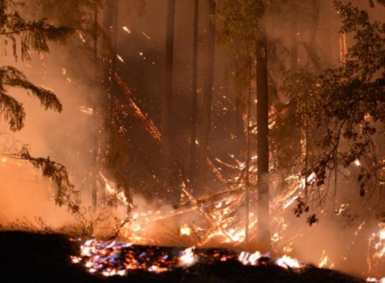 The Carr Fire had destroyed about 100,000 acres in Northern California by Monday morning, officials said. Firefighters now have the blaze, which has so far killed 6, about 20 percent contained. Photo courtesy Cal Fire Shasta County