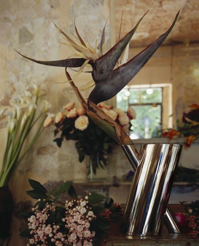 0-2edeb630-800-Alessi-Tronco-vaso-per-fiori