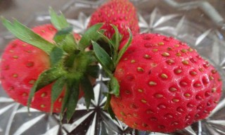 Our first three strawberries....