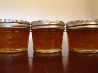 Mandarin Marmalade - Blog 1