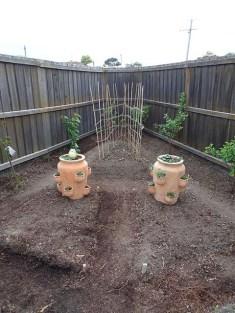 Garden 21 October 2016 -