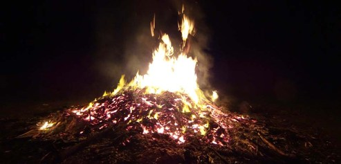 The bonfire - 2