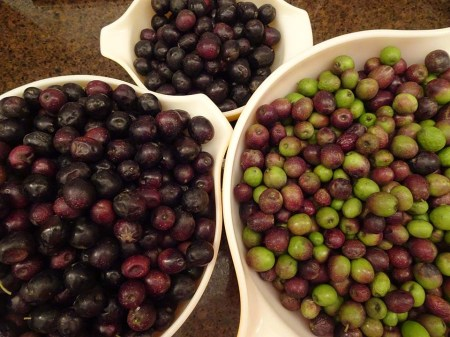 Navarre Olives - Sorted - 1