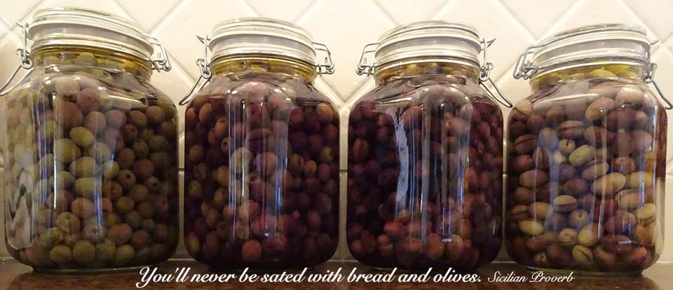 Curing Your Own Olives…