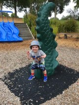 Cooper at the park - 3
