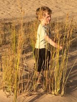 Discovering the reeds...