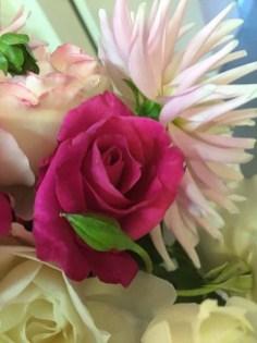 Rose & dahlia-r