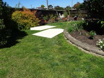 Garden Shed 20 October 2016 - 1