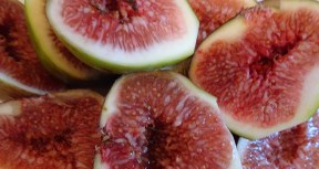 A great fig should look like it's just about to burst its skin. When squeezed lightly it should give a little and not spring back. It must be almost unctuously sweet, soft and wet. (Yotam Ottolenghi)