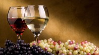 wine-grapes-white-green-blue-red-glass-hd-wallpaper-921