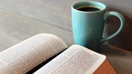 bible study 260 x 145
