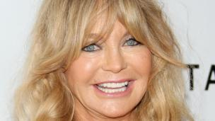 LOS ANGELES, CA - DECEMBER 12: Honoree Goldie Hawn attends the 2013 amfAR Inspiration Gala Los Angeles at Milk Studios on December 12, 2013 in Los Angeles, California. (Photo by Mike Windle/Getty Images)