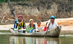three owners. A family paddles down the upper Rupununi River in their dugout canoe