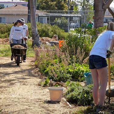 Fremont Wellness Center & Community Garden