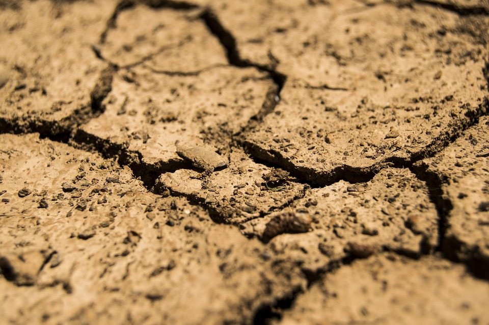 drought-780088_960_720