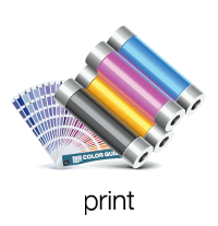 Toner cartridges and a color guide, labeled print.