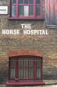 Horse Hospital cropped & resized