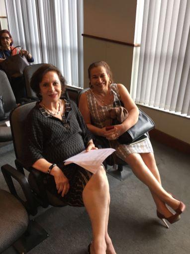 Liaison Committee: Nilde Franch e Gleda Brandão