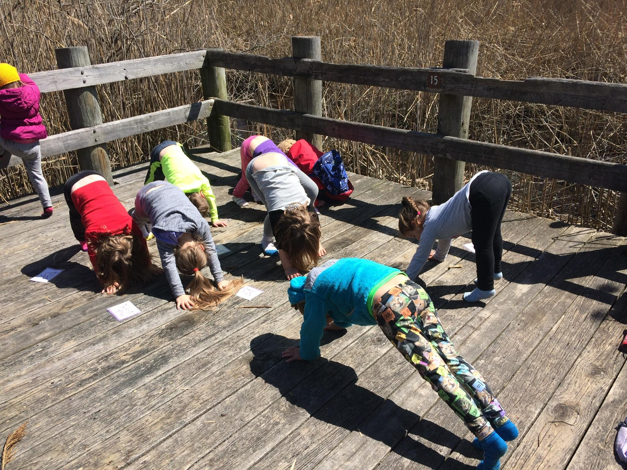 Little Peepers Forest School teaches preschoolers about the environment