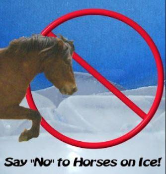 no horses on ice