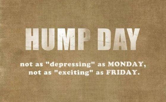 hump day 2