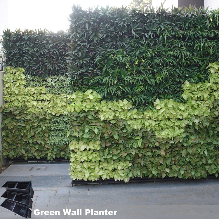 Indoor And Outdoor Living Wall System Vertical Green Wall Planter View Living Wall System Sol Product Details From Taizhou Sol Plastics Co Ltd On Alibaba Com