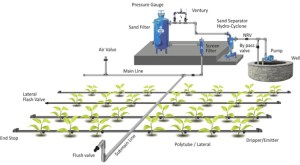 Greenhouse Drip Irrigation System Plant Watering System