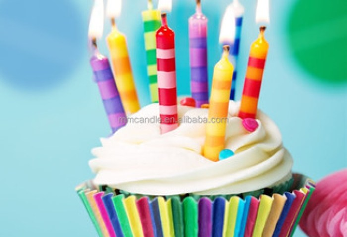 Happy Birthday Candlebirthday Party Candle View Funny Birthday