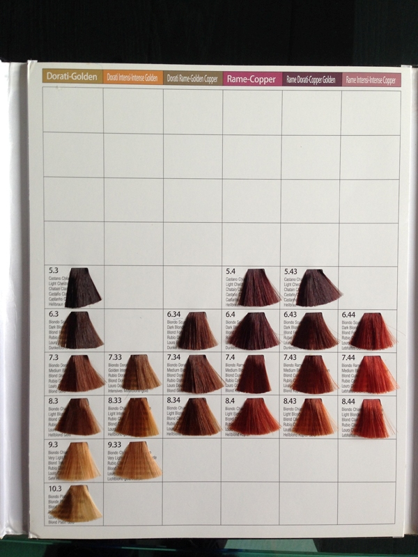 Oem 3 Folds Hair Dye Color Chart Hair Color Swatch Book