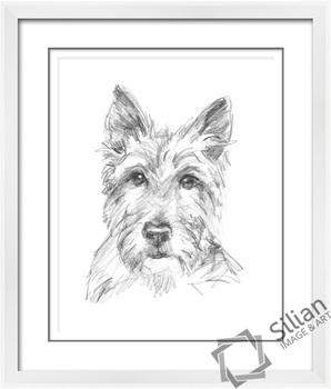 2014 Terbaru Sketsa Lukisan Pensil Anjing Hitam Dan Putih Dengan