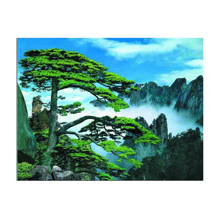 3d صورة من مناظر طبيعية جميلة من المورد الصين مخزونات فنون