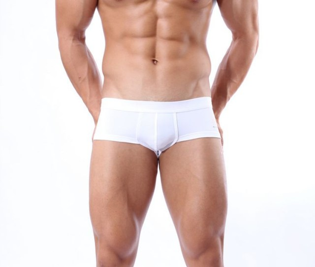 High Quality Underwear Sheer Boxer Shorts For Men Fat Man Boxer Gay Sexy