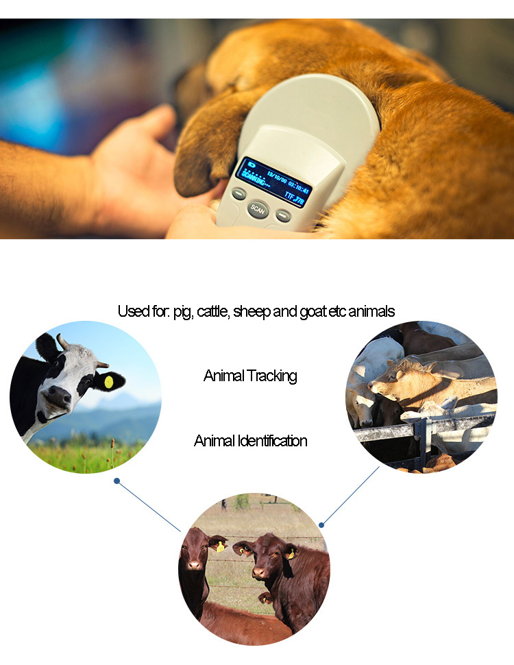Hot Sale Various Size Long Range Rfid Animal Ear Tag For ...