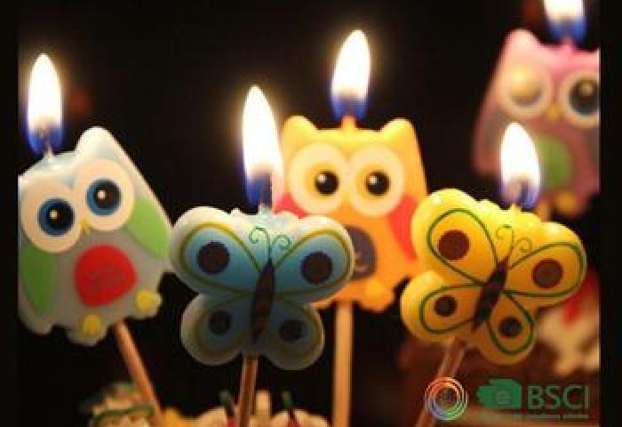 Most Popular Decorative Animation Owl Shaped Happy Birthday Cake