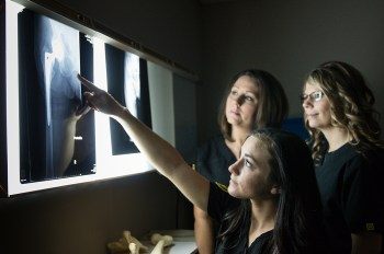 Rad Tech students looking at X-rays.