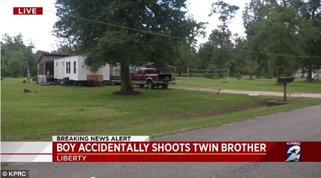 Teen shoots at snake, accidentally kills twin brother