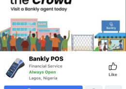 Bankly POS scam