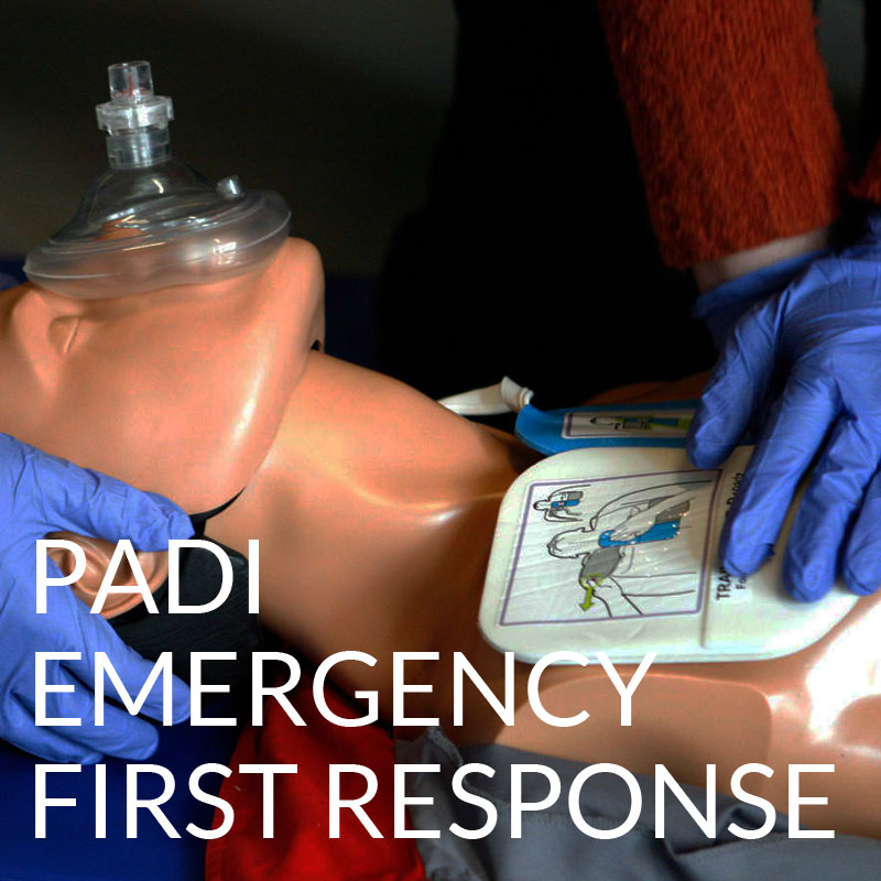 padi emergency first response efr course puerto galera