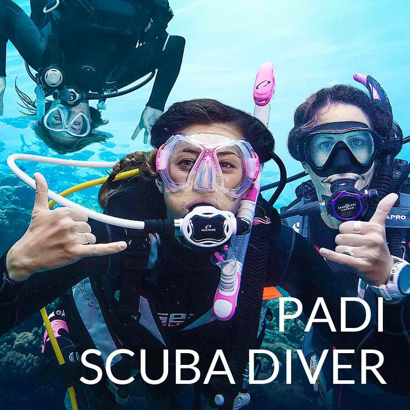 padi scuba diver course puerto galera