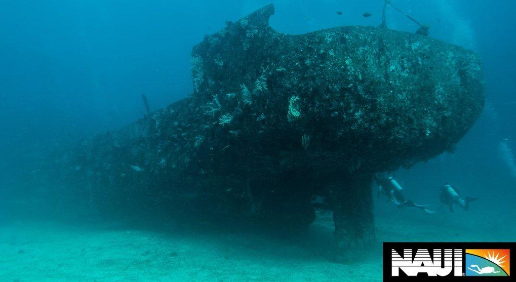 naui deep dive course puerto galera