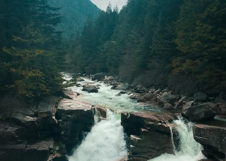 Gold Creeks3