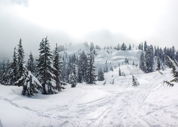 Mt. Seymour4