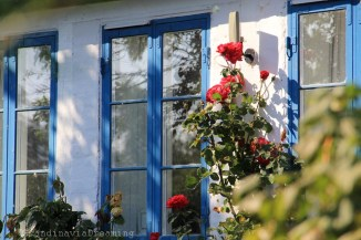 Maison et jardin du village de Nyord